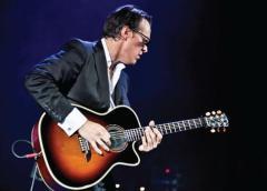 alvarez guitar joe bonamassa