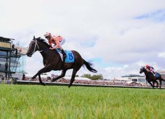 http://www.smh.com.au/sport/horseracing/lightning-pace-sets-up-hometown-record-tilt-20120211-1sydo.html