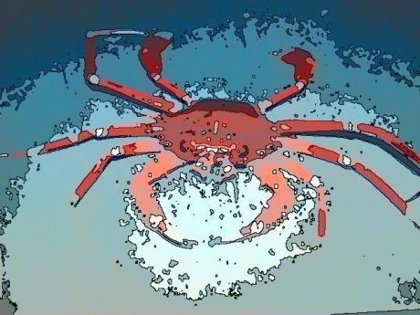 cancer the crab thenakedlistener