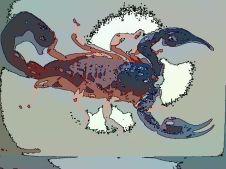 Scorpio (Oct 23 - Nov 21)