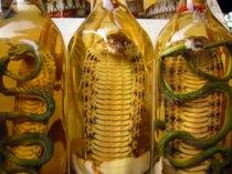 snake oil bottles