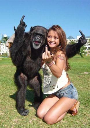 monkey chick NqhQG