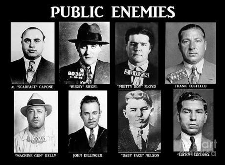 original public enemies by paul ward