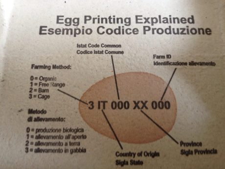 egg label via annie lennox