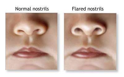 nostrils healthcentral-com
