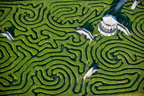 Maze at Longleat House, England, via Imgur