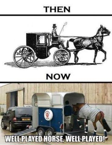 Horse and carriage - Imgur