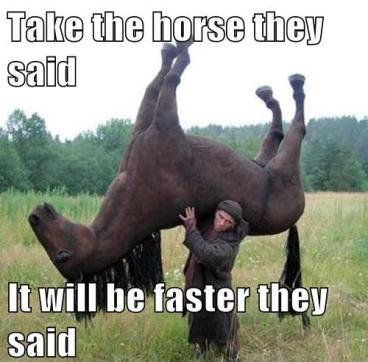 take the horse