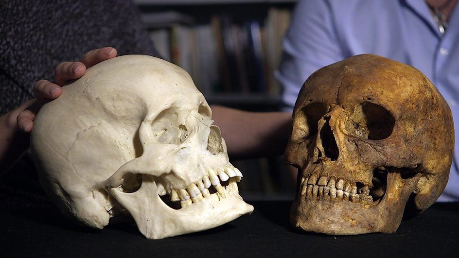 post-mediaeval and mediaeval skulls.jpeg